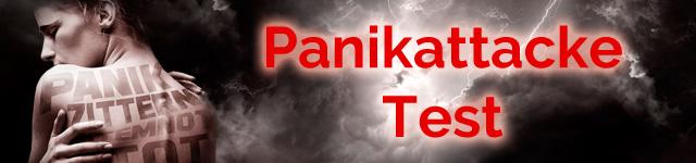 Panikattacke Test kostenlos online